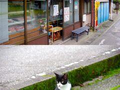 昼どきになったので何か食べたいと思うのですが食べ物屋さんが見つかりません。 人もあまり見かけないです。 そんな中、駅前のこのお店の前だけ常に人がいます。 何かと思って覗いてみると、お肉屋さん(ますや[https://www.city.nikko.lg.jp/hisho/gyousei/shisei/nikko_brand/masuyanikuten.html])でした。 近所の人が次々とコロッケを大量買いしていきます。 店内を覗くと有名人サインが飾ってあって、どうやら有名なお店らしいことがわかります。 他に店らしい店もない中ありがたい。 コロッケとメンチカツを1つづつ買ってバスが来るのを食べながら待ちます。 熱々の揚げたてです。外はカリッとしており、中はしっかり具が詰まっていて、これは美味しい。