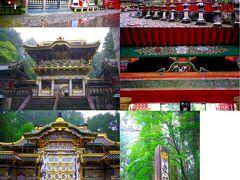 さらに少し歩いて東照宮[http://www.toshogu.jp/]へ。 三神庫の象、神厩舎の三猿を見て、陽明門を抜け逆柱をチェック。唐門を見てから、拝殿でお参りをして、奥宮へ行く入口にある眠り猫の前まで来ました。 奥宮へ行くつもりだったのですが、お参りしてしまうと薬師堂(本地堂)へ行く時間がなくなると言われてしまい、奥宮参拝は諦めて薬師堂へ。鳴き龍の鳴き声は場所で音が変わることをわかりやすく説明してもらえてなかなか面白かったです。  駆け足での参拝となってしまいましたが、修学旅行の時よりもじっくりと見られたような気がします。  ちなみに社号標は渋沢栄一の揮毫とのこと[http://www.toshogu.jp/blog/2019/04/post-155.html]。これは知りませんでした。