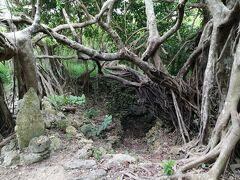 これが、「花城井戸」。 竹富島の集落がこの井戸を中心に広がり、発展したという由緒ある井戸です。12~13世紀頃の話です。