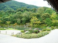 夏企画の花玉手水はありませんが、天龍寺の庭園を観てきました。 緑豊かでやはり素晴らしい庭園。