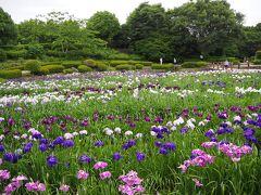 そのよろしくない雰囲気の道を抜けた先にあったのが、県立相模原公園のしょうぶ園。どうやら花の咲く時期は「しょうぶまつり」なるイベントやってて、人もそこそこ来ていました。