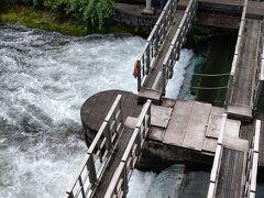 羽村取水堰です。