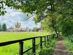 上丸牛舎フットパス。 森の中の散歩道を進むと、昔からの牛舎の建物が見えてきます。 すごく良い雰囲気。