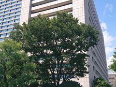 竹橋駅の真上のKKRホテルのがランチの場所。 KKR=国家公務員共済組合連合会の宿泊施設らしく、ホテルなのに庁舎っぽいビルだよね。