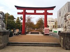 続いて、参道を歩き「鶴岡八幡宮」の方向へ。