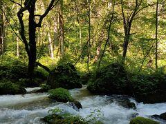 2日目。せっかくなので奥入瀬までドライブしました。谷地温泉から30分くらいでした。