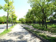 お腹を満たしてから大阪城へ。  私は子供の頃と大人になってから1回行ってるけど、旦那はだぶん初めてかな? 大阪城公園…人が…いない…。