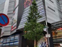 場所はTOHOシネマズのすぐ向かい側でわかりやすかったです。昔のコマ劇場。 しかし歌舞伎町を久しぶりに歩きましたが、夜の街感はまだまだ健在でした。子どもたちは歩かせたくない感じ。 そして賑わってるお店があるなと思って見てみると100%アルコールを提供しいるお店。 うーん、お客さんが集中しちゃって逆に密になっているような…