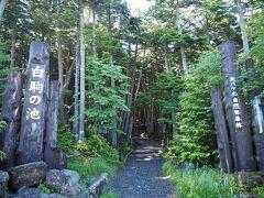 前日夜出発して「八ヶ岳PA」で仮眠、早朝出発して「白駒の池(苔の森)」を目指しました。「白駒の池駐車場」には8時頃到着しましたが、もう満車が近い様な状態!(・o・) 駐車場は有料で普通車600円でした。トイレはありますが、こちらも有料です。  ここからハイキングコースへと行かれる方が多いのか、皆さんそれっぽい格好でした。私は池周りだけだったので軽装です。なんかめっちゃ浮いてるー!www でも、一応、簡単にですがマダニ感染症対策を…肌が出ている部分にはマダニにも効果のある虫除けスプレーをかけていきました(^_^;)  駐車場でも涼しく感じましたが、森の中に入ると更に気温が下がる感覚がありました。私は日焼け防止のため上着を持っていたのですが、家族は半袖だったので寒さで震えていました(笑)歩いて体が温まってくれば問題ないレベルではありますが。
