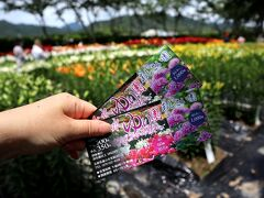 栗スイーツを食べて、それだけで京都に帰るのもあまりに寂しいなぁ~と。 車で10分。近くのゆり園&紫陽花園へ行ってみることに。 大人/700円