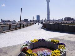 この日は桜橋の方から隅田川沿いを歩いて浅草方面に向かいました。 この辺は観光客は少なく、地元の方々が多くいました。