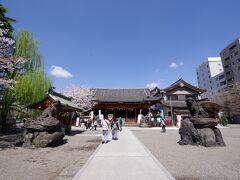 浅草神社境内にも少量ですが桜は咲いていました。コロナ鎮静祈願に訪れている方もいらっしゃったようです。