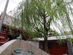 鳩ポッポの歌碑は童謡「鳩ポッポ」の作詞家である東くめが、浅草寺の境内にて鳩と戯れている子供たちをみてこの歌詞を書いて、滝蓮太郎により作曲されたそうです。