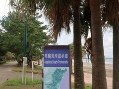 青島海岸散歩道をてくてくと。