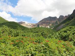 こんな美しい山々の姿を見ると今の私には無理だとは思いますが、登ってみたくなります。