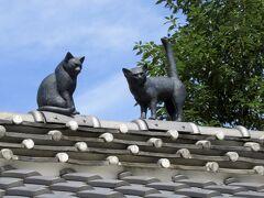 猫はみゃーお みゃーお と屋根で鳴き