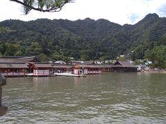 遂に厳島神社に到着!厳島神社は1996年に世界遺産に登録され、多くの人々が信仰したという古式ゆかしき神社です。推古天皇元年(593年)、佐伯鞍職が創建し。その後に平清盛が、安芸守(あきのかみ)になったことにより、嚴島神社を厚く信仰しました。広島において四季を通じて国内外から多くの人々が訪れる観光名所です。(ひろしま観光ナビ参照)厳島神社では、鎮火祭り・舞楽・神能などの行事が開催されています。(厳島神社参照)