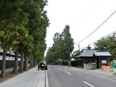 気が付くと足が禅林街に向いていました。静かな並木道の両側に曹洞宗のお寺が33もあるそう。ときおり法事の車が行き交います。