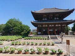 次は「喜光寺」 行基が創建したお寺
