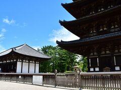 興福寺 五重塔と東金堂。