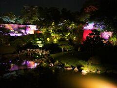 玉泉院丸庭園のライトアップイベント この日最後の演目を途中からでしたが、ギリギリ見られました。