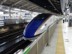 定刻の22:28に東京駅に到着。  夕食の際に飲んだお酒の酔いと疲れで新潟を発車して直ぐに眠ってしまったので、東京駅に到着するまではあっという間でした。  写真は、反対側のホームに停車していた北陸新幹線です。