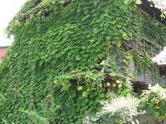 『樹敬寺』の廃屋を観に来ました。 執拗にもホドがあります。