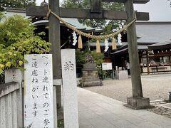 忍城から歩いて行田八幡神社へ⛩  社務所が閉まるギリギリでした。 雨まで降ってきました。