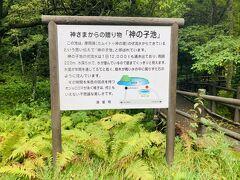 次に訪れたのは、神の子池。 初めて来ました。