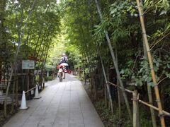 次に熱海の来宮神社へ