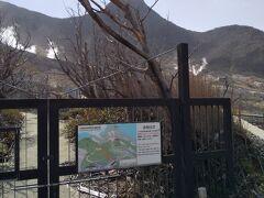 大涌谷自然研究路には入れませんでした。