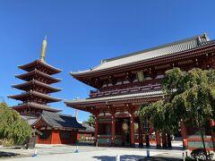 宝蔵門と五重塔のコラボが青空に映えますね。