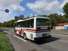 神居古潭バス停に着きました。 降りるときにバスの運転手さんが「道を渡る時は充分に注意してくださいね」というアドバイスがありました。 なるほど、、なかなかの交通量です。 車が途切れません。 まあ、急ぐ旅でもないのでのんびりと待つことにします。
