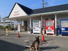 9月10日、朝の散歩で伊予鉄道高浜線の神津駅にて。