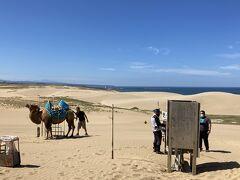 砂丘到着。  リフト降りて目の前にラクダがいた。 今日は暑いからかラクダには乗れないとのこと。