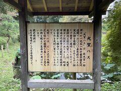 さて、最初に来たのは薬師池公園です。四季折々の花が楽しめる公園で蓮も有名です。