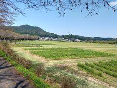 低山ハイキングで有名な日和田山。