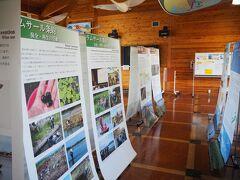 このセンターは何回か訪ねてきている所です。渡り鳥や水鳥等の資料が豊富で勉強になります。
