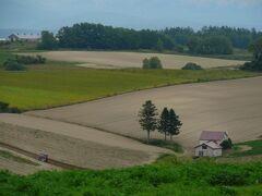 そして赤い屋根のある丘 だと思います多分・・  トラクターが土を耕していて絵になっています