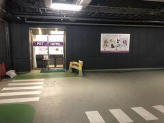 7月17日(金)  7月の宮古島には一緒に行けなかった長男ですが、今回は一緒に行けることになりました。5人揃っての家族旅行はやっぱり嬉しいな♪  子ども達は午前中学校だったので、学校が終わってお昼を食べてから家を出発します。  14:45 空港駐車場到着。 ペットの犬は前回と同じ羽田空港P4の1階にある「羽田空港ペットホテル」に預けます。 今回はトリミングもお願いしたので、お迎えに来たとき、きっとかわいくなってるぞ~。