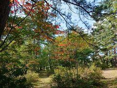 桜の木が早くも紅葉していました。 一の鳥居苑地は、数年前まで戸隠神社の一の鳥居があったようです。 今は広い森林公園になっています。 飯綱山の登山口にもなっており、駐車場やそこそこ綺麗なトイレもあります。