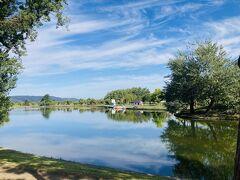 おはようございまーす。 早起きしてつくも水郷公園を散歩です。 湖面が美しい。 まるでフィンランドのよう。 行ったことないですが。