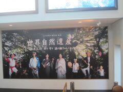 奄美大島空港到着。世界遺産の島へやってきました。