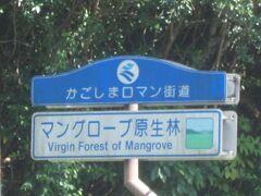 かごしまロマン街道の文字、何度も見かけました。マングローブ原生林。見てみようと思います。