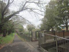 ここから善福寺緑地公園を歩いて行きます