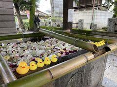 車を購入したのでお詣りに。 総社神社へ出かけていったので手水舎も見ていきましょう~  あひるちゃんがしっかりと並べられていました~♪
