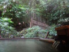 まあそんな細かいことは気にせず、緑の竹に囲まれて一日中露天風呂を満喫しました。