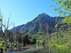 15分ほどで岳沢湿原に到着 奥に見えるのは六百山(標高2,450m)、立ち枯れの木と共に美しい景観を生み出しています。