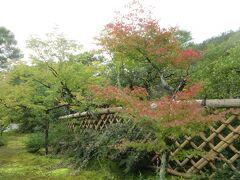 ず~と奥のお庭へ進みました。薄紅葉の光悦垣が見事です。