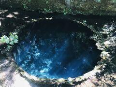 ここは、富士山の湧き水があります。